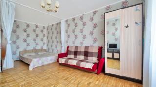 Квартира в Отрадном / Standart Room